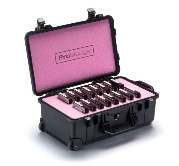 ProStorage Pelican 3.5 Inch Hard Drive Storage Case